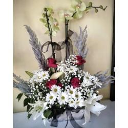 Aranjman Orkide-1